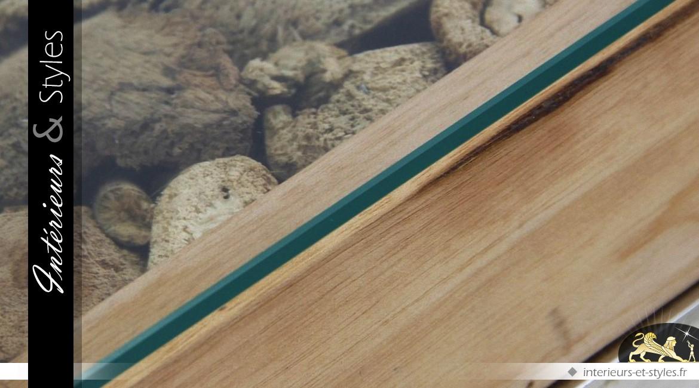 Table basse métal et verre avec vitrine décoration naturelle