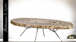 Table basse ovale en bois pétrifié et métal argenté