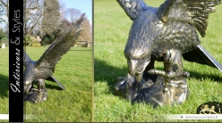 Sculpture animalière Aigle finition bronze antique (droite)